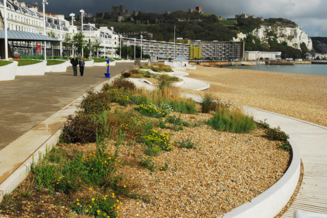 Landscape & Urbanism