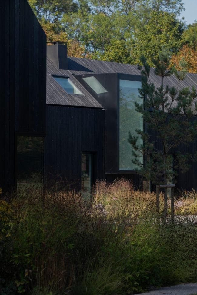 Focus on a wood burnt extension